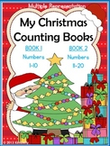 My Christmas Counting Books (Numbers 1-10 & 11-20) 2 Inter