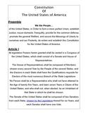 My Constitution Activity