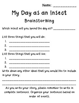 My Day as an Insect