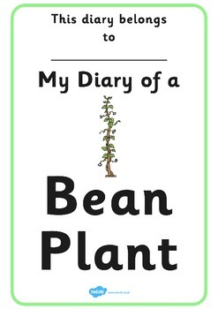 My Diary of a Bean Plant Booklet Template