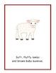 My Favorite Stuffed Things Christmas Read Aloud Big Book