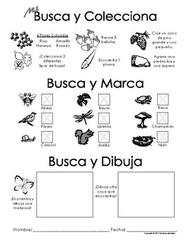 My Find and Collect, Check and Sketch! - Nature Scavenger Hunt - SPANISH
