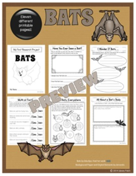 Bat Research Report