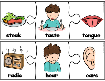 My Five Senses Activities - No Prep