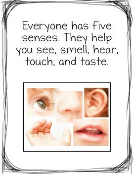 My Five Senses - Adapted