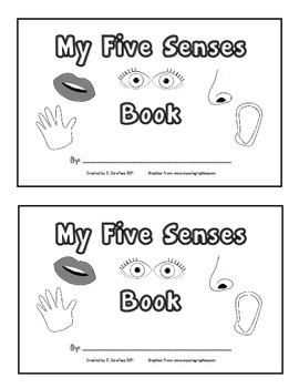 My Five Senses Book