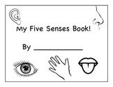 My Five Senses Book