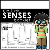 My Five Senses Booklet