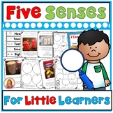 My Five Senses (Hands On Fun!) Activities, Experiments, Craft Book, Posters