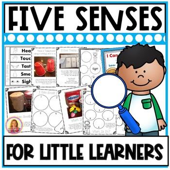 My Five Senses (Hands On Fun!) Activities, Experiments, Cr