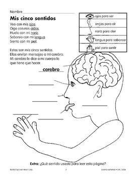 My Five Senses/Mis cinco sentidos