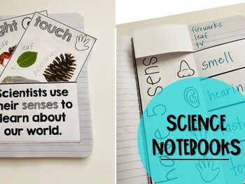 My Five Senses Science Resources Collection