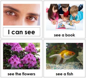 My Five Senses - Toddler