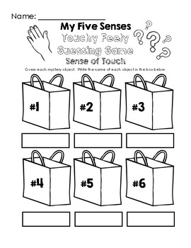 My Five Senses - Touchy Feely Guessing Game Worksheet
