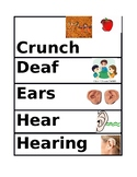 My Five Senses Vocabulary