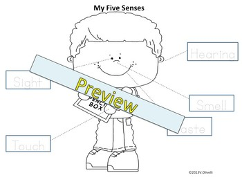 My Five Senses an ELL Newcomers' Resource to Build Concepts + Literacy Skills