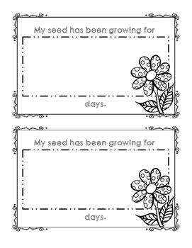 My Flower Observation Journal