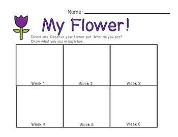 My Flower Observation Journal