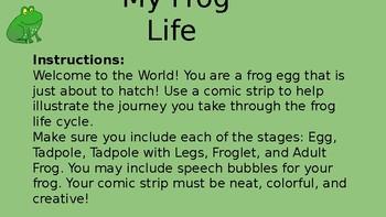 My Frog Life Cycle Comic Strip
