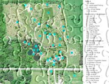 My Garden 154