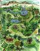 My Garden 259