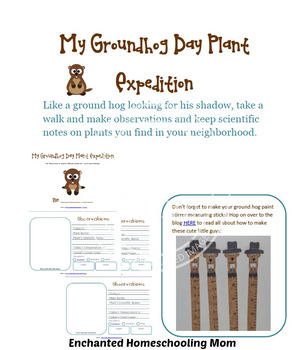 My Groundhog Day Plant Expedition