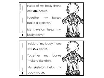 My Human Body Book