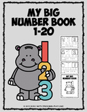 My Big Number Book 1-20   Distance Learning