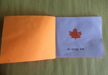 My Orange Book - Color Book (Individual)