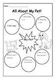 My Pet Creative Writing Plan