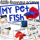 My Pet Fish - Science for Little Learners (preschool, pre-k, & kinder)