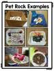 Pet Rock Craft and Writing Activity: A Fun Rocks & Minerals Activity!