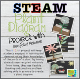 Plant Diagram: STEAM Project with Recycled Materials| Dist