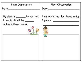 My Plant Observation Book