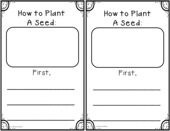 My Plant Observation Journal by Chelsea Schoeck | TpT