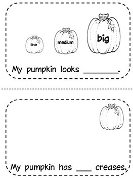 My Pumpkin!  A booklet about size, color, weight & measurement of a pumpkin.