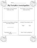 My Pumpkin Investigation