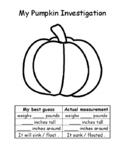 My Pumpkin Investigaton