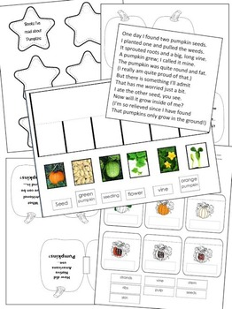 My Pumpkin Lapbook - Interactive Learning