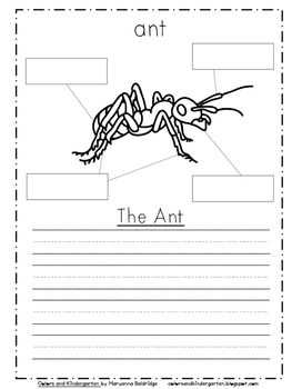 My Science Journal: Bugs