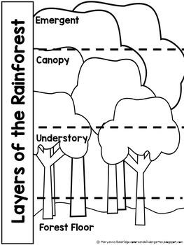 My Science Journal: Rainforest