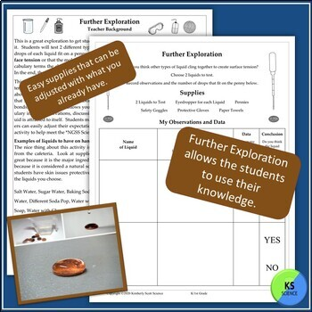 My Science Journal on Wet Pennies:  Experimenting with Surface Tension