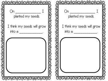 My Seed Observation Journal