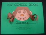 My Senses Theme Book
