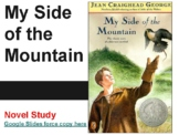 My Side of the Mountain 17 Day Novel Study