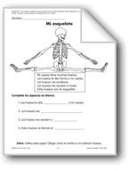 My Skeleton/Mi esqueleto