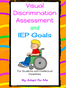 Visual Discrimination Assessment for Students with Intellectual Disabilities