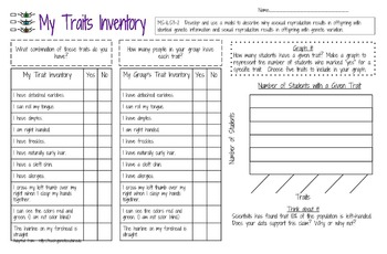 My Traits Inventory