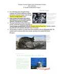 My Travel to a Foreign Country Power Point Presentation