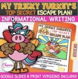 My Tricky Turkey's Top Secret Escape Plan | Informational